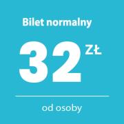 Bilet_normalny